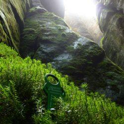 Der Ahnefeld auf Tour in der Natur